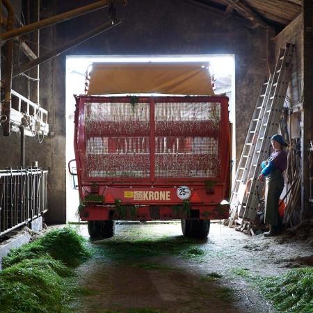 Leica Q Farm L1140307